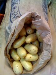 Молодой картофель из Пакистана